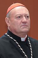Ravasi Gianfranco, Cardinale
