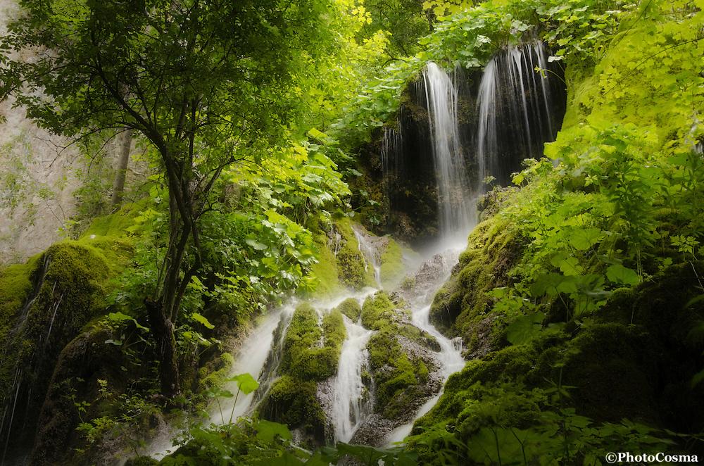 Waterfall in green jungle