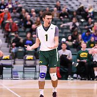 1st year setter Jake Fleming (1) of the Regina Cougars in action during Men's Volleyball home game on November 18 at Centre for Kinesiology, Health and Sport. Credit: Arthur Ward/Arthur Images
