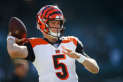 OAKLAND, CA - NOVEMBER 17: Quarterback Ryan Finley #5 of the Cincinnati Bengals warms up before the game against the Oakland Raiders at RingCentral Coliseum on November 17, 2019 in Oakland, California. The Oakland Raiders defeated the Cincinnati Bengals 17-10. (Photo by Jason O. Watson/Getty Images) *** Local Caption *** Ryan Finley