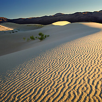 Ripples on the Eureka sand dunes, Death Valley National Park, California.