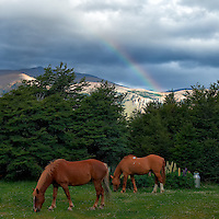 Two Horses Grazing under a Rainbow in the Backyard of Hosteria El Pilar in El Chalten, Argentina - Patagonia. Image taken with a Nikon D3x and 50 mm f/1.4G lens (ISO 800, 50 mm, f/5.6, 1/320 sec).
