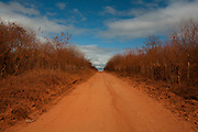 Salinas_MG, Brasil...Estrada de terra em Salinas, Minas Gerais...Dirty road in Salinas, Minas Gerais...Foto: LEO DRUMOND / NITRO