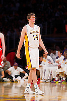 25 December 2011: Forward Troy Murphy of the Los Angeles Lakers against the Chicago Bulls during the second half of the Bulls 88-87 victory over the Lakers at the STAPLES Center in Los Angeles, CA.