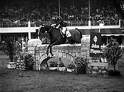 "07/08/1980<br /> 08/07/1980<br /> 07 August 1980<br /> R.D.S. Horse Show: John Player International, Ballsbridge, Dublin. Captain J. Roche (Ireland) on ""Lough Crew""."