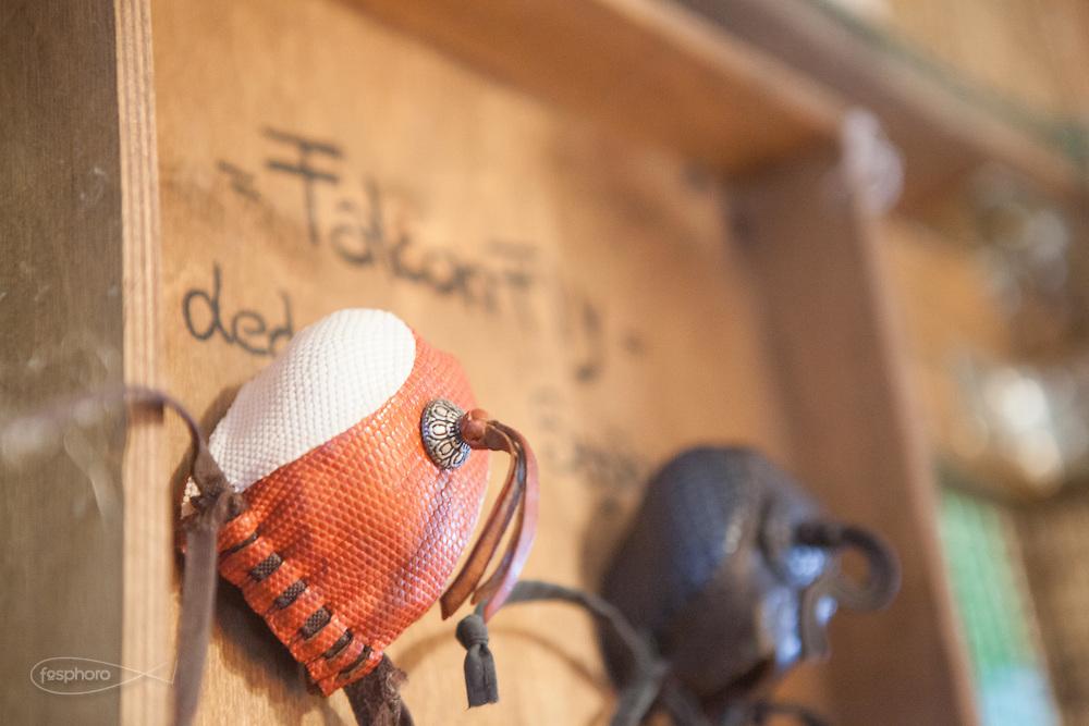Traversetolo (Parma) - Accessori indispensabili per il trasporto: i cappucci servono per evitare che i rapaci si innevosiscano durante gli spostamenti.