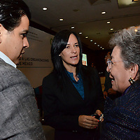 Toluca, México.- María Angélica Luna Parra, Titular del Instituto Nacional de Desarrollo Social (INDESOL) durante el Foro de Consulta Sobre Mecanismos de Fomento a las Organizaciones de la Sociedad Civil del Estado de México. Agencia MVT / José Hernández