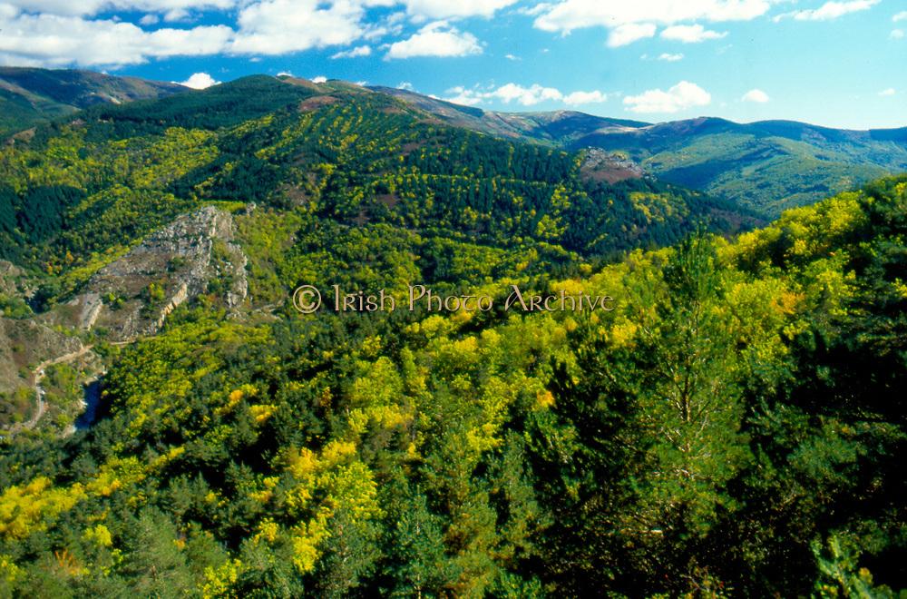 France, Languedoc and Roussillon.  Gorges du Dourbie, Nr Treves.