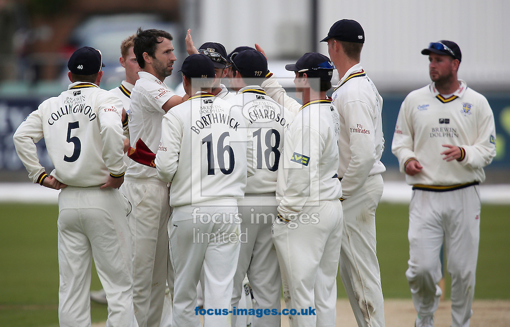 Picture by Paul Gaythorpe/Focus Images Ltd +447771 871632<br /> 18/09/2013<br /> Durham County Cricket Club players congratulate bowler Graham Onions on taking the wicket of Chris Read of Nottinghamshire County Cricket Club during the LV County Championship Div One match at Emirates Durham ICG, Chester-le-Street.