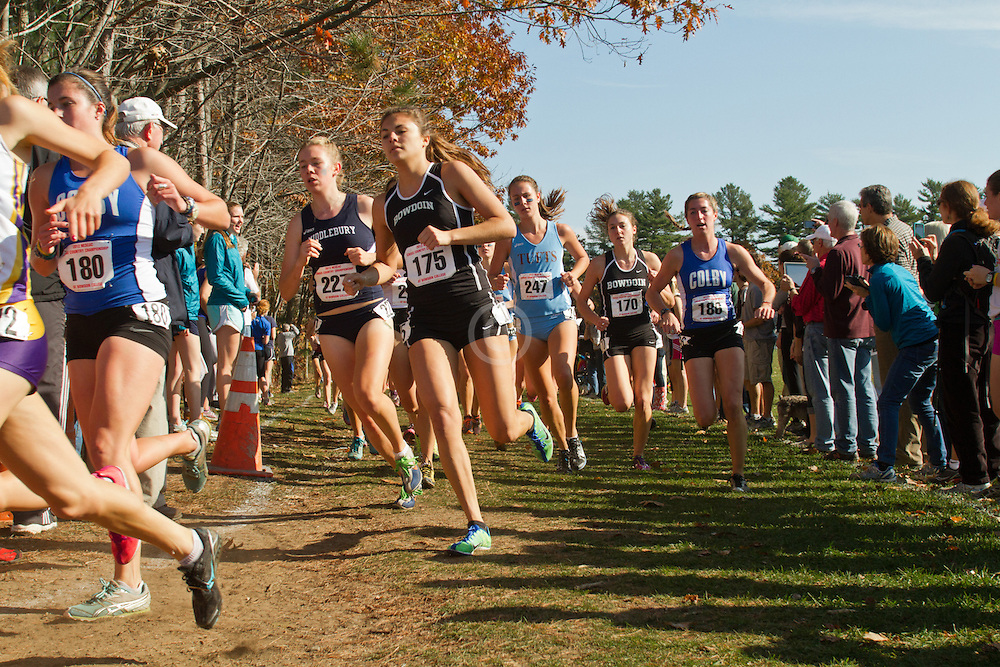 2012 NESCAC Cross Country  Championships:
