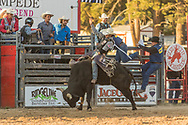 Tim Bingham rides Summit Pro Rodeo's 21 Sabbath Rest SM during the Xtreme Bulls event at the Elizabeth Stampede on Friday, June 1, 2018.
