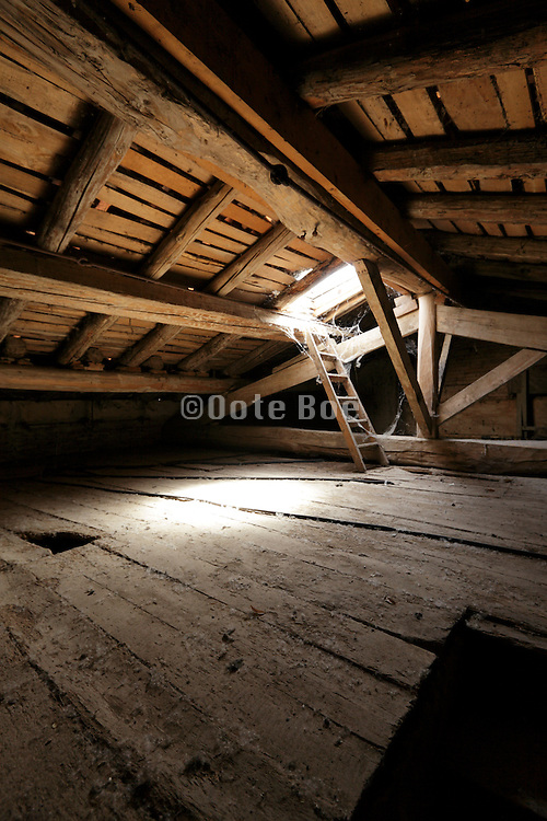 empty attic roof space with skylight