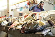 The fish market in Tangier