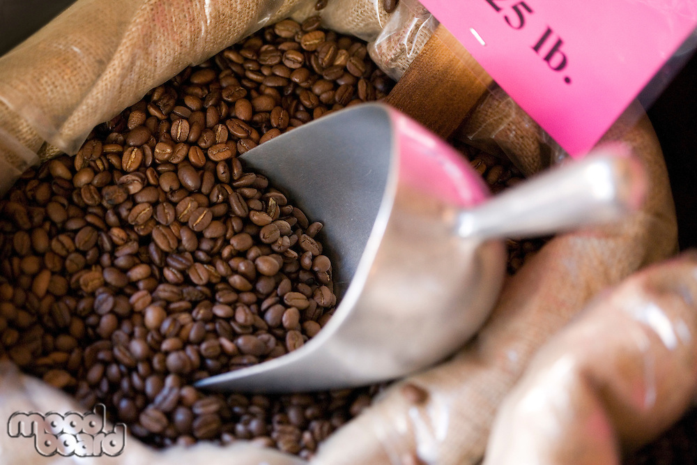 Bag of coffee beans with metal scoop