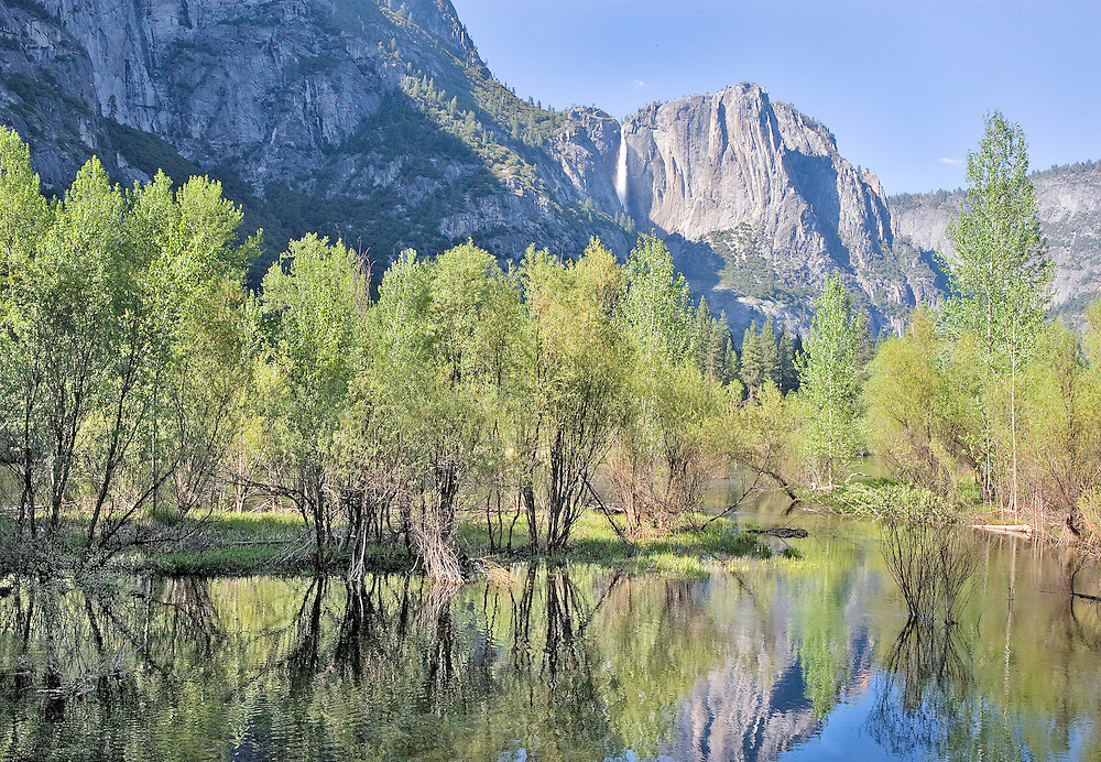Yosemite Falls, Merced River and Early Spring Trees, Yosemite National Park, CA.