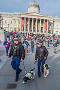 Security is tight as Police with sniffer dogs check the area for explosives before the event. Je suis Charlie/I am Charlie - A largely silent (with the occasional rendition of the Marseilaise)gathering in solidarity with the march in Paris today.  Trafalgar Square, London, UK 11 Jan 2015Guy Bell, 07771 786236, guy@gbphotos.com