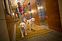 Photographs of lifestyle on the South Waterfront area of Portland, Oregon.  High rise living.  Two labradors take their owner for a walk in their apartment building.