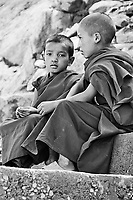 Young Monks Ladakh India