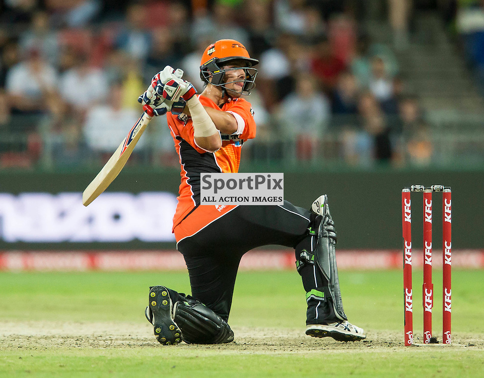 KFC Big Bash League T20 2015-16 , Sydney Thunder v Perth Scorchers, Spotless Stadium; 7 January 2016<br /> Perth Scorchers Ashton Agar plays a ball over his stumps.