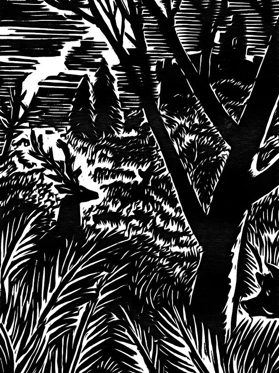 A black / white drawing of a deer and a wild boar in the woods