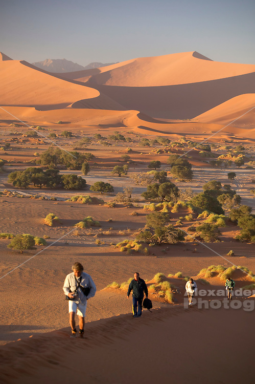 Namibia, Namib desert - Travelers hike up a dune ridge on a massive 500ft high dune deep in the Namib desert near the access point of the Sossusvlei pan which spreads ut in the distance.