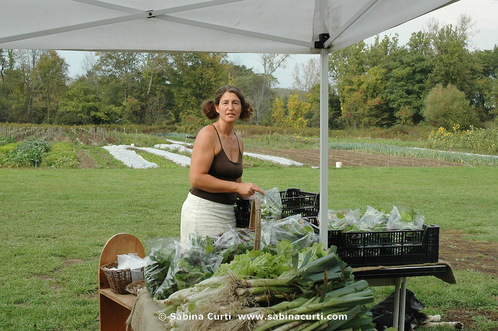 Farm Girl Farm CSA, sustainable community supported agriculture. Laura Meister, CSA pick-up day.