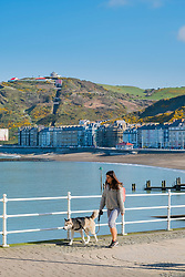 © London NewsPictures. 07/04/2017. Aberystwyth, UK. A woman walking her dog on the promenade on a bright sunny spring morning  in Aberystwyth west Wales. High pressure dominates the weather in the UK, promising good weather and temperatures into the low 20s centigrade over  the coming weekend. Photo credit: Keith Morris/LNP