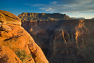 Sunset light on steep cliffs at Toroweap, Grand Canyon National Park, Arizona