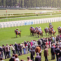 Yume (A. Hamelin) wins PRIX DE CHEVILLY