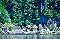 Rocky shoreline of the Snetisham Peninsula.  Tongass National Forest, Southeast Alaska.