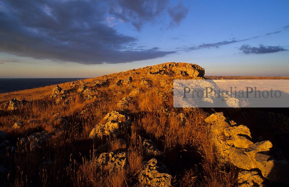Steppic landscape near Sant'Emiliano tower, Otranto