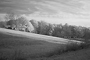 Firefly Farm hilly landscape in rural Kentucky.  Infrared (IR) photograph by fine art photographer Michael Kloth. Black and white infrared photographs