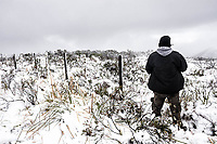 Homem sobre campo coberto de neve.  Urubici, Santa Catarina, Brasil. / <br /> Man standing on a field covered by snow.  Urubici, Santa Catarina, Brazil.