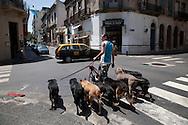 SAN TELMO historical Tango area  in old Buenos Aires - Argentina  .///.quartier historique de SAN TELMO  dans le vieux Buenos Aires - Argentine .///.BUAIR013