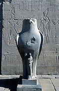 Giant statue of the Ancient Egyptian falcon-headed god Horus, Edfu