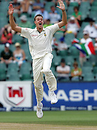Morne Morkel  appeals for the wicket of Paul Collingwood during day 4 of the 4th Castle Test between South Africa and England held at The Bidvest Wanderers Stadium in Johannesburg, South Africa on the 17 January 2010.Photo by:  Ron Gaunt/SPORTZPICS
