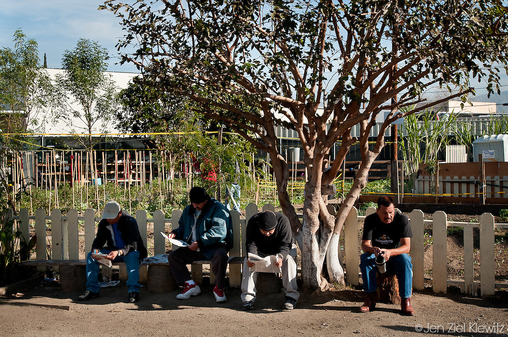 Day laborers, who wished to remain unidentified, wait for work at the North Hollywood Day Labor Center, in North Hollywood, California, on December 4, 2009. They are seated in front of the community vegetable garden sponsored by the center. Day laborers are workers in manual labor fields, such as home construction and painting, who solicit temporary work, often from public street corners. Day laborers are made up of American citizens, documented immigrants, and most commonly, undocumented immigrants, all of whom are unable to find other work or regular employment. A majority of the day laborers in the Los Angeles area are from Central America and are Spanish speakers. Photo by Jen Klewitz