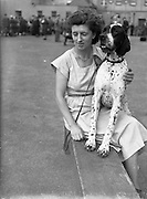 """19/07/1952<br /> 07/19/1952<br /> 19 July 1952<br /> Dog show: All Breed Championship, 10th Annual Show of the Combined Canine Clubs at Terenure College,<br /> Templeogue Road Terenure Dublin.<br /> Miss D.J. Smyth, 160 Upper Drumcondra Road with her pointer """"Stonthorpe Jayars Royalist"""" winner Bread Award and Reserve Green Star."""