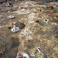 Remnants of the  post holes from an ancient dwelling and shell artifacts in the Tequesta archaeology site at the Met Square development,  downtown Miami. Site managed by Archaeological and Historical Conservancy (AHC).