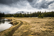 Tuolumne Meadows at Yosemite National Park