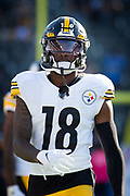Pittsburgh Steelers wide receiver Diontae Johnson (18) warms up before an NFL football game between the Los Angeles Chargers and the Pittsburgh Steelers. The Steelers defeated the Chargers 24-17 on Sunday, Oct. 13, 2019, in Carson, Calif. (Ed Ruvalcaba/Image of Sport)