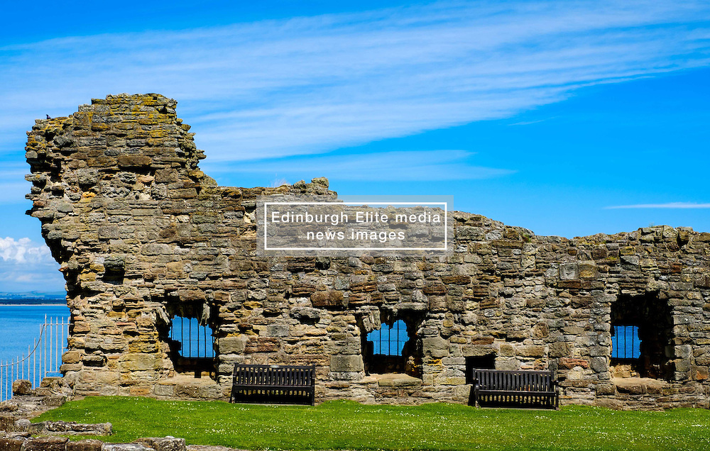 A ruined wall at St Andrews Castle, St Andrews, Fife, Scotland<br /> <br /> (c) Andrew Wilson | Edinburgh Elite media