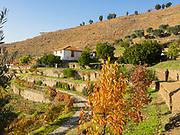 Quinta da Manoella