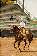 Will James Roundup, Ranch Rodeo, Working Ranch Horse, Hardin, Montana, Reata Brannaman