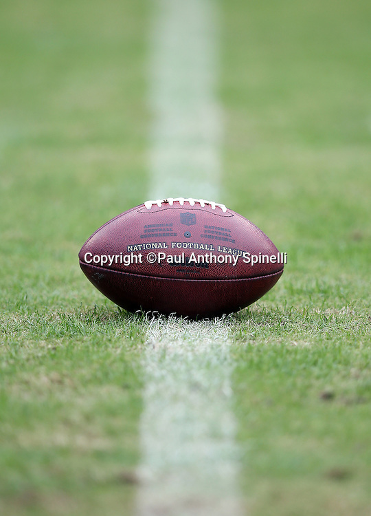 A football sits on the 35 yard line grass before the Tennessee Titans 2015 week 7 regular season NFL football game against the Atlanta Falcons on Sunday, Oct. 25, 2015 in Nashville, Tenn. The Falcons won the game 10-7. (©Paul Anthony Spinelli)