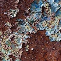Oxidized Beauty Series