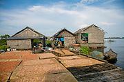 Dried Shrimp, Moat Khla, Floating Fisherman Village, Tonle Sap Lake, Cambodia