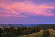 Full  moon at sunset from Reesor Lake VIewpoint<br /> Cypress Hills Provincial Park<br /> Alberta<br /> Canada