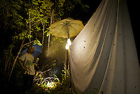Light trapping for moths being conducted by LIPI entomologist Harry Sutrisno.