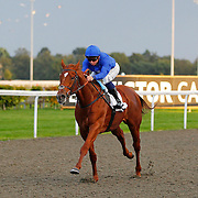 Kempton 10th October 2013
